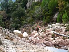 Canyon du Niffru : les premières vasques