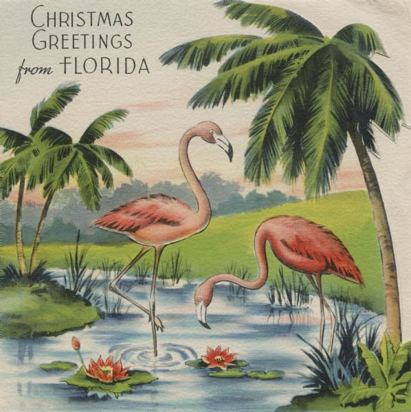Christmas greetings from Florida