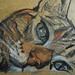 gattoncino24_DSCN7500 by Viola Buzzi