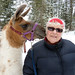 Small photo of Sue and Her Amiable Llama