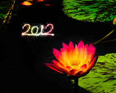 Happy New Year 2012!!!