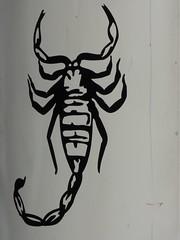 art, scorpion, invertebrate, drawing, illustration, black,
