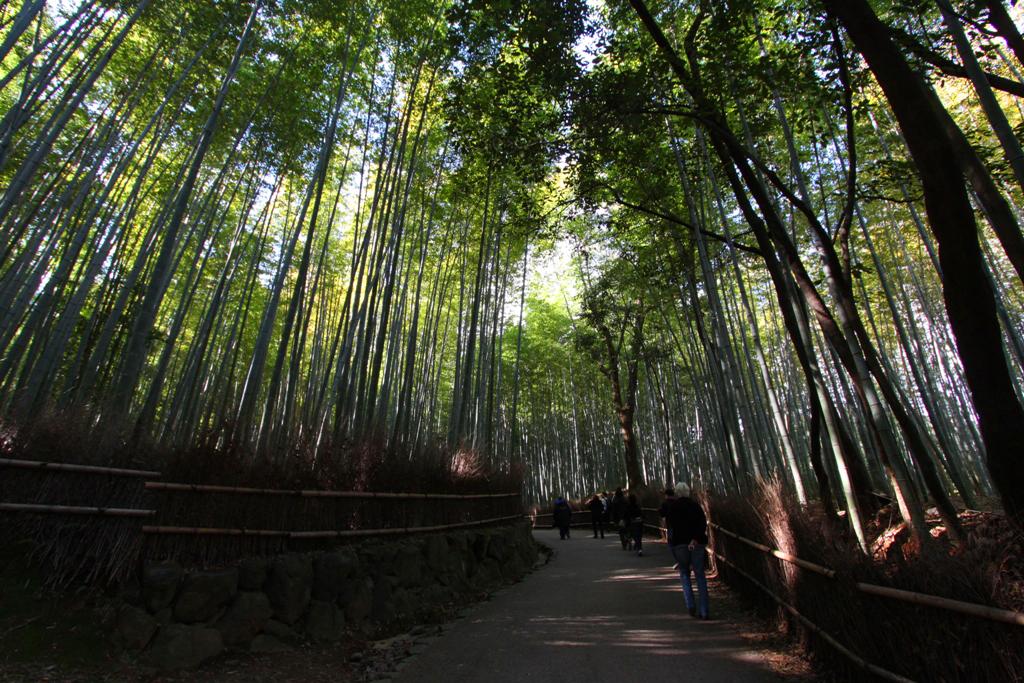 Kyoto Arashiyama tourist guide (18)