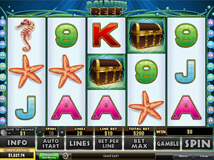 Dolphin Reef slot game online review