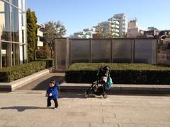 代官山アドレスのとらちゃん(2012/1/9)