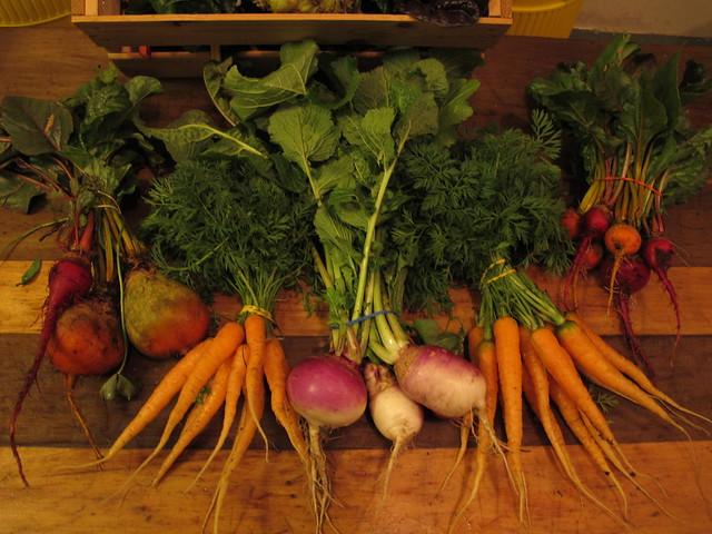 Winter Harvest