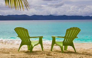 Lounge Chairs Under A Palm Tree