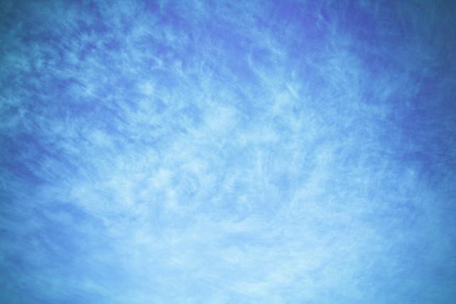 IMAGE: http://farm8.staticflickr.com/7030/6676317105_bd32e4c73d_z.jpg