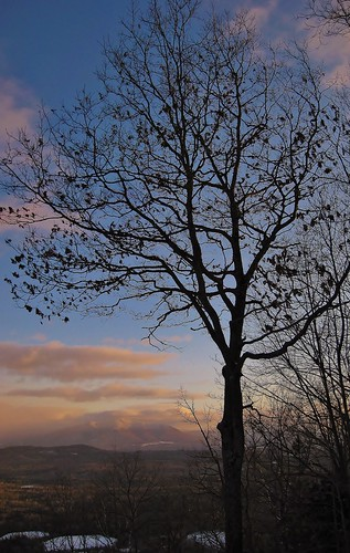 park new trees winter sunset snow tree clouds mt state martha dusk low january nh hampshire mount views weeks 2012 stratocumulus