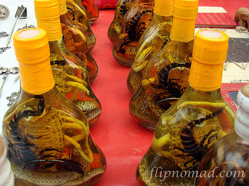 FlipNomad's Photo Thursday – Snake Wine