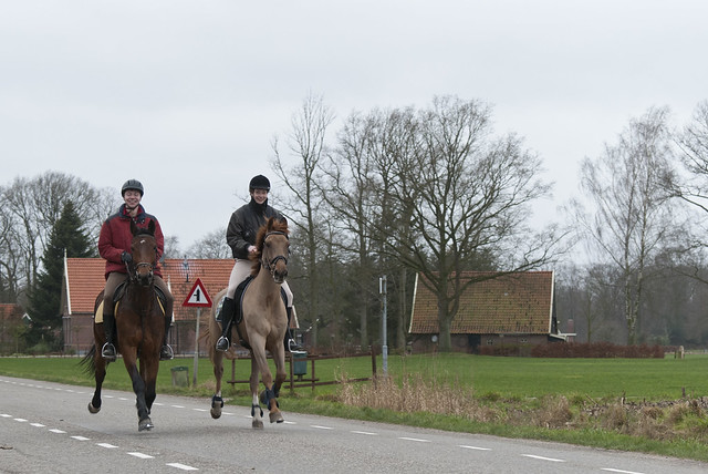 2012-01-22 Snertrit WRPC