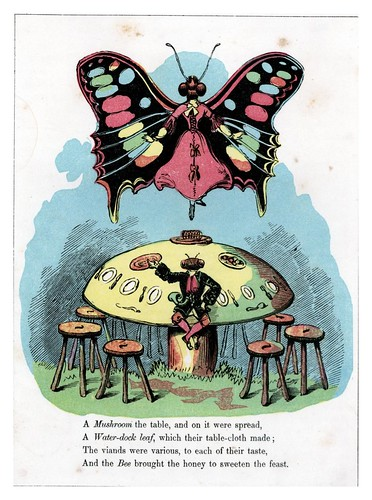 013-The Butterfly's ball 1860 -William Roscoe -University of Florida Digital Collections