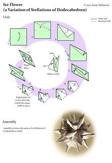 Ice Flower Diagram