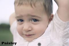 IMG_5645 paisley