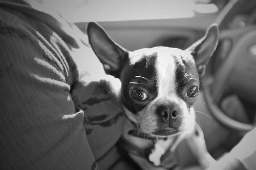 Nubby.