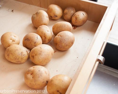 CeleriacGratin_PotatoesInDrawer.jpg