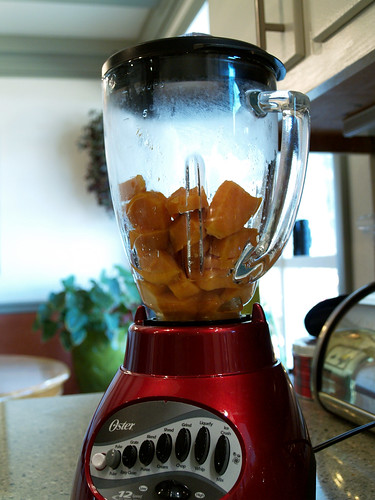 blender sweet potato