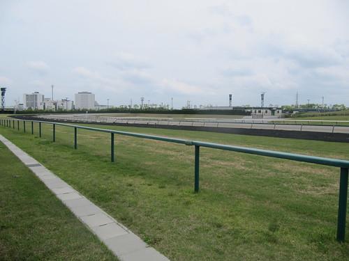 中京競馬場の芝コース