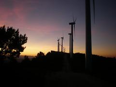 """""""Peña Alta"""" wind park"""