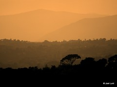 dusk falls over Nice
