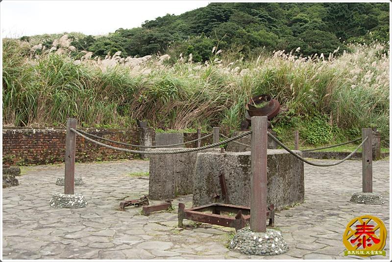 2011.11.26 - 陽明山秋芒-5