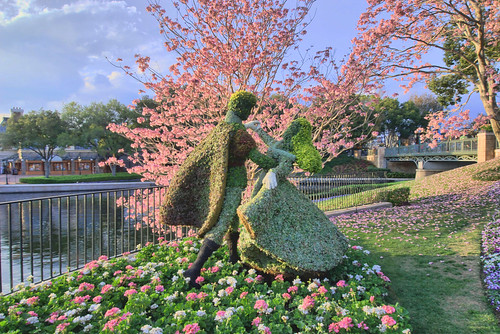 Dancing Through The Flowers - WDW 2011