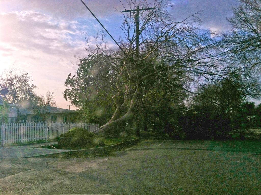 Pasadena Wind 2011
