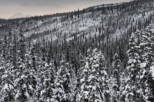 [フリー画像素材] 自然風景, 山, 雪, 雪山 ID:201210121600