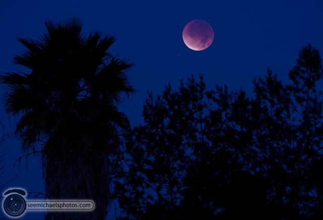 Lunar Eclipse 121011 © Michael Klayman-001