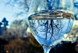 Wine Glass-04
