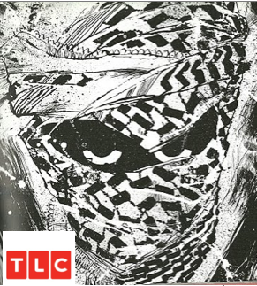 An image from Frank Miller's comic book showing a close-up of a jihadist solider. Two eyes peer out of darkness through a head wrapped entirely in a jihad scarf. The picture is menacing in every way. A TLC logo has been poorly photoshopped in the bottom left corner.