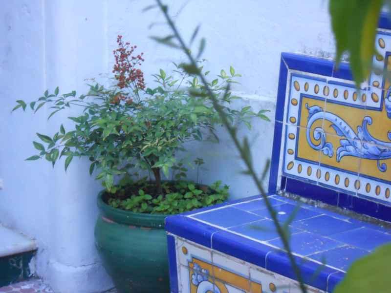 Jardín andaluz la soleá 4