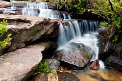 McCarrs Creek
