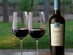Algodon Wine Estates, o el costado elegante y sofisticado que puede brindar hoy San Rafael