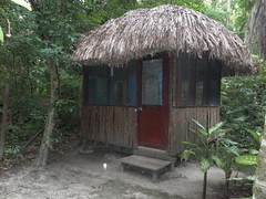 cottage(0.0), gazebo(0.0), thatching(1.0), outdoor structure(1.0), hut(1.0), wood(1.0), shack(1.0), shed(1.0),