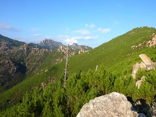 Punta Radichella par la sente de chasseurs : arrivée à la crête avec vue sur Punta Balardia/Batarchjone derrière