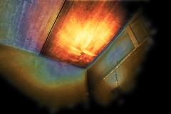 vivid colors 4