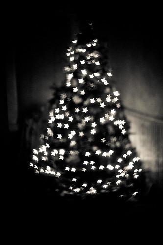 Pre-Christmas7