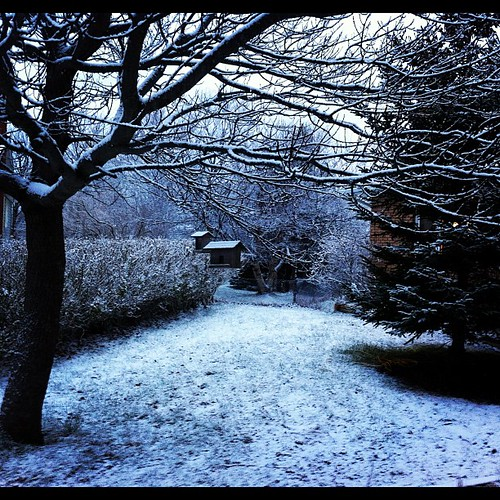 A little bit of a wintry wonderland feel this morning.