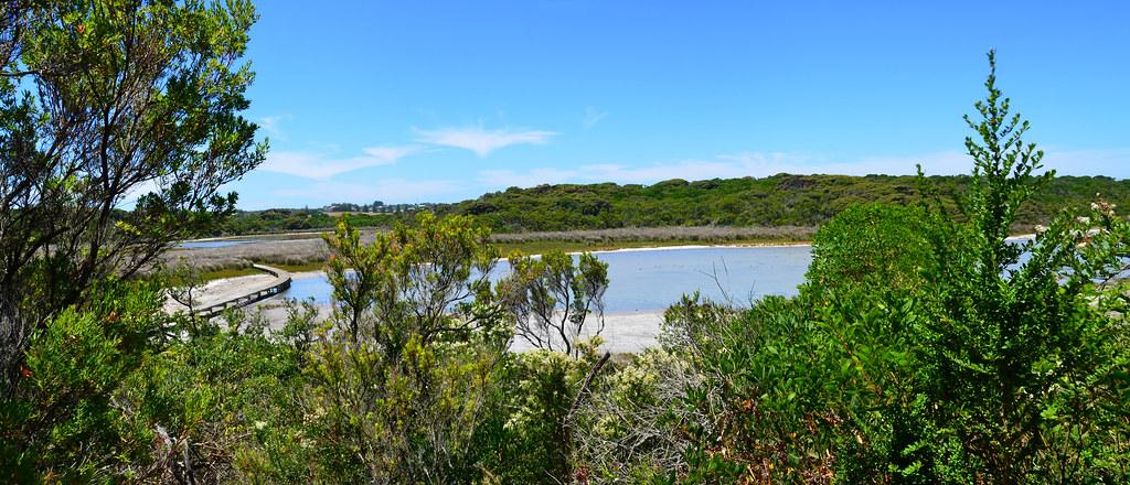 Livingstone Island C