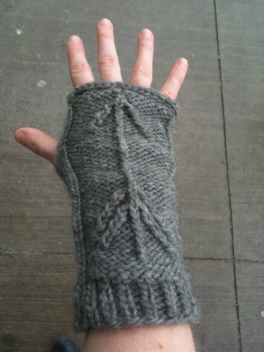 Pointers Armwarmers