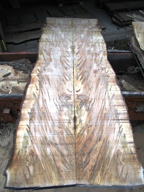 Ambrosia Maple Book Matched Slab Lumber Flickr Photo