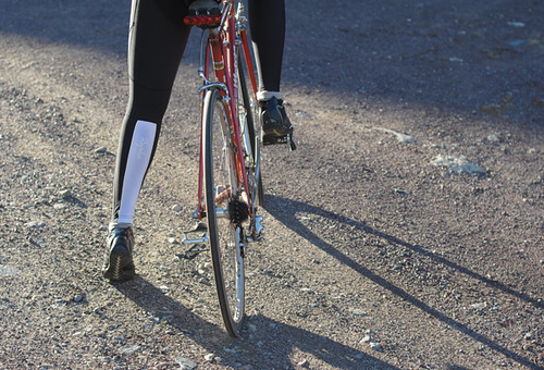 Rapha Women's Winter Tights