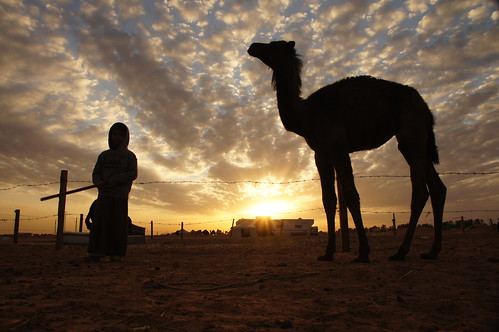 Welcome to 2012 - back in the Saudi desert by CharlesFred