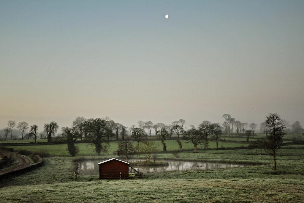 Petit matin brumeux dans la campagne Normande (2234)