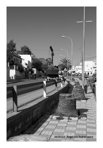 20/365+1  El cementerio de vidas sesgadas by Ángel L. Duarte