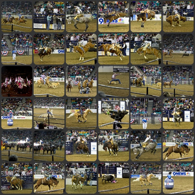 Stockshow Collage