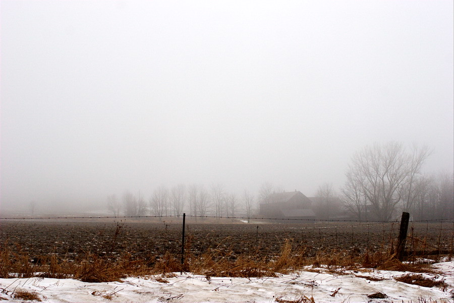 Mist(1)