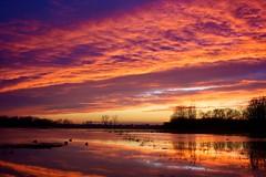 Sunset @ Bourgoyen-Ossemeersen