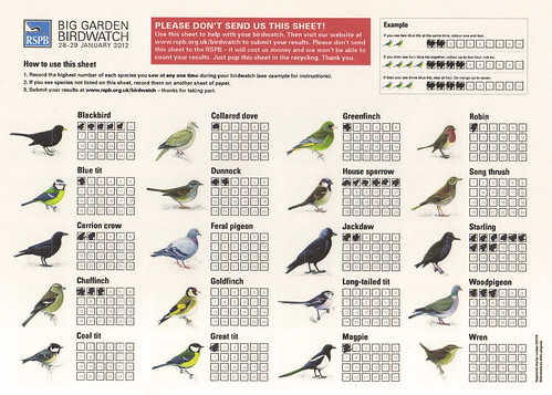 RSPB Big Gardeb Birdwatch 2012